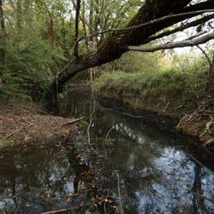 Riviere-Lamboulas-automne